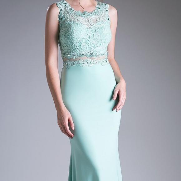 Cinderella's Closet Dresses & Skirts - Mint Sleeveless Prom Trumpet Long Dress